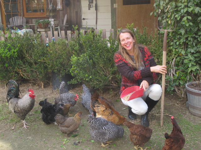 Photo Session with the Chickens